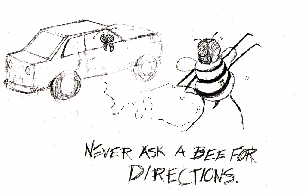 Never Ask A Bee For Directions